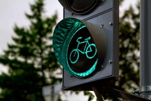 Why Electric Bicycles?